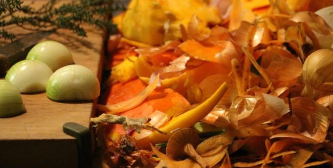 épluchures de légumes