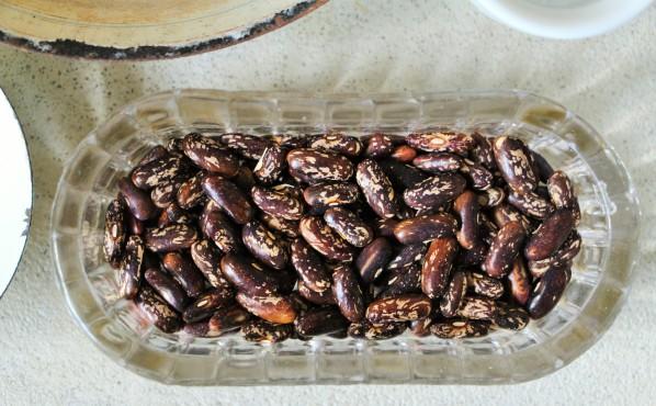 Les graines du haricot 'Castandel'