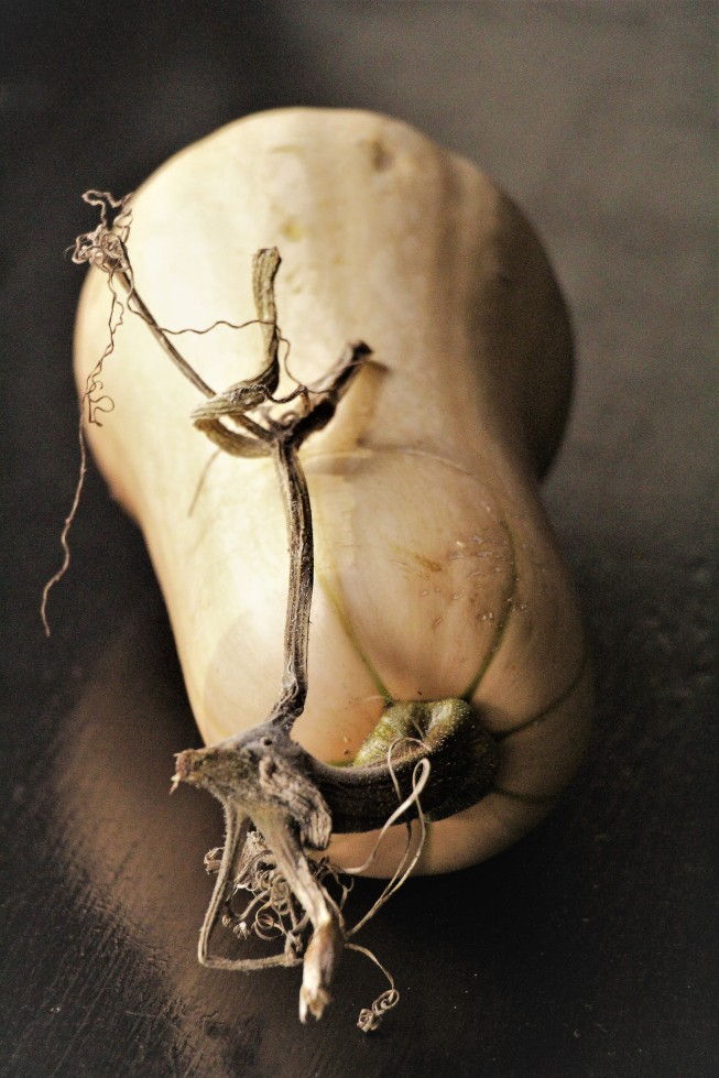 ltaj-butternut